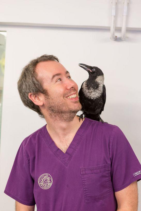 Dr Peter Morgan
