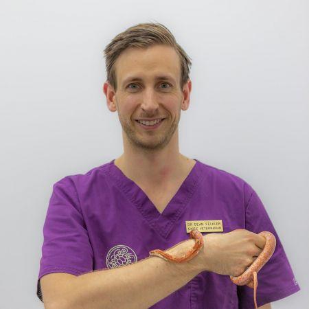 Dr Dean Felkler